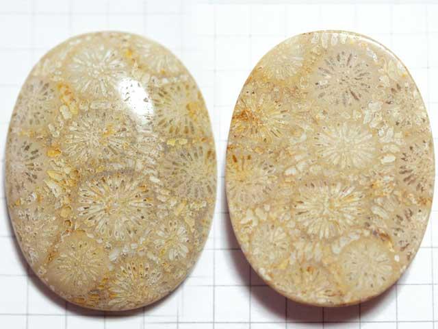 STK169T36.6×27.5 オーバル 菊目石