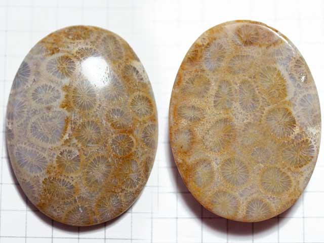 STK170T38.7×29.1 オーバル 菊目石