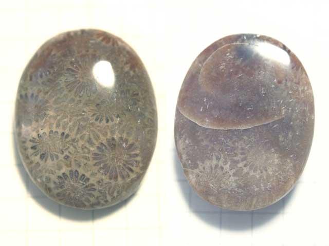 STK178T 27.7×21.7 オーバル 菊目石
