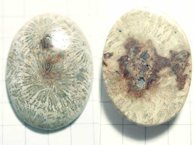 STK181T 26.6×19.6 オーバル 菊目石