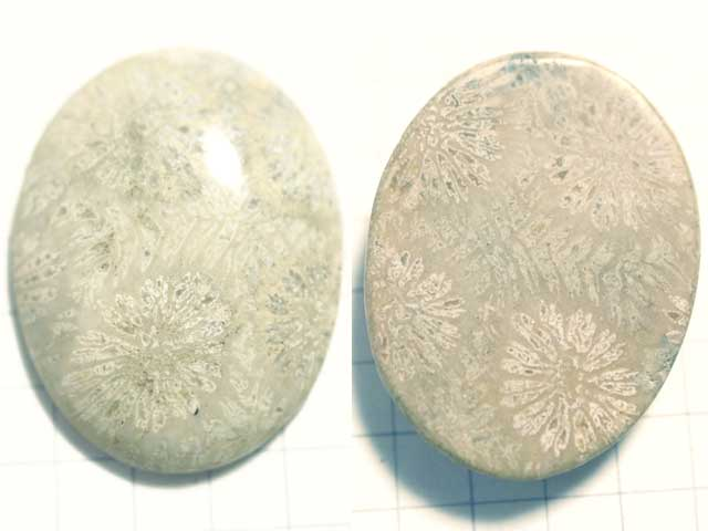 STK186T 28.6×22 オーバル 菊目石